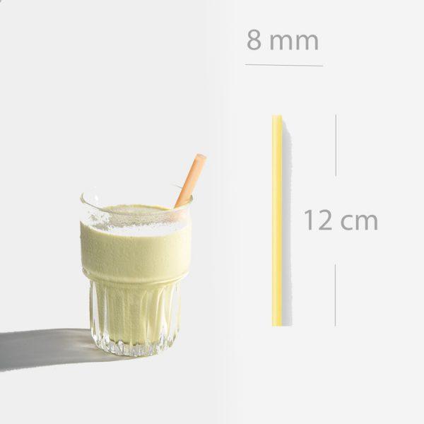 ống hút sinh tố size ngắn